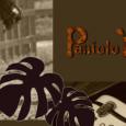 2月19日(土)19〜21時、鵠沼海岸駅前 Parthea からJハワイアンミュージックのパニオロ山内さん(HOOPERS)のミニライブをustream生中継します。